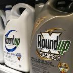 Bayer shares tumble after second court rules its Roundup weedkiller caused cancer