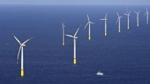 Turbine maker Vestas buys majority stake in Swedish wind farm