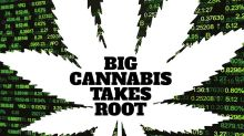 Will Marijuana Industry Overtake Beer As Legalization Spurs Innovation?