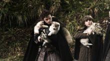 """Abschied von einem Schattenwolf: """"Game of Thrones""""-Hund Odin ist gestorben"""