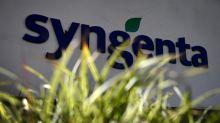 Syngenta's China Identity Crisis