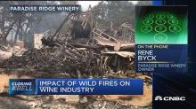 Cal Fire continues to probe cause of deadly wildfires despite arson arrest