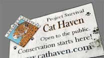 Founder: After Death, Cat Haven to Reopen Sunday
