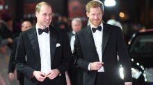 Les princes William et Harry annoncent l'installation prochaine d'une statue en hommage à Lady Di