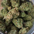 Marijuana REIT Innovative Industrial Properties Doubles Revenue, Profitability in Q1