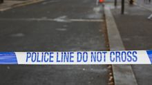 Stabbed police officer chased and detained suspect despite 'bleeding profusely'