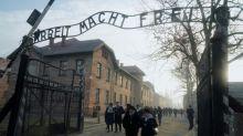 Auschwitz survivors sound alarm 75 years after liberation