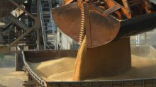 In dumping probe, China spooks Australia grain trade already sweating out drought hit