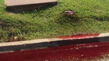 Blood and embalming fluid seeps onto street outside Baton Rouge funeral home