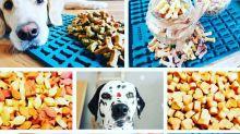 Diese Backmatte braucht jeder Hundebesitzer: Leckerlis ganz einfach selbst machen