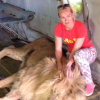 Woman mauled 'like a ragdoll' after posing for photo with lion