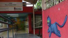 Escola Criativa reúne artistas e revitaliza espaços de escolas em SP