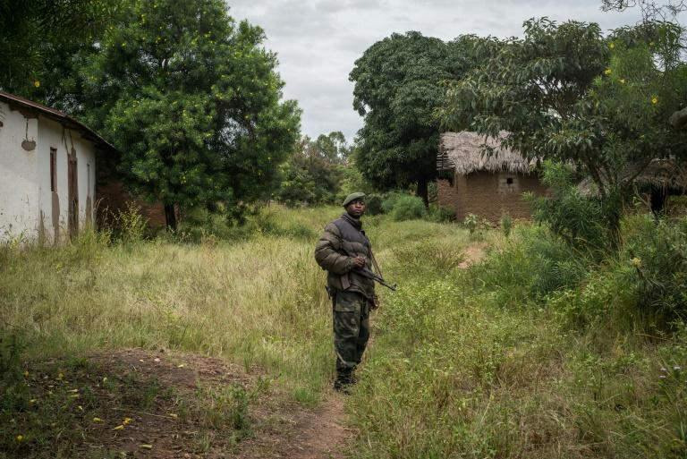 'All' armed groups commit to ceasefire in DRC's South Kivu