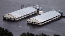 Pollution fears: Swollen rivers swamp ash dumps, hog farms