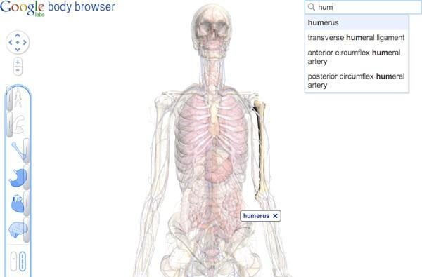 Google body browser now getting down and you know it's crush grooving