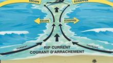 Expert worries about rip current increase and 'COVID fatigue' on P.E.I. beaches