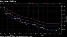 Turkey Avoids Interest-Rate Hike