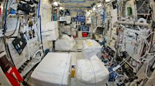 The ISS is crawling with nasty bacteria