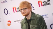 'It all seems very strange': Why Ed Sheeran's neighbours are upset about hay bales 'shielding' his pond