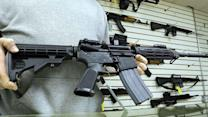 Will Obama's approach to gun control work?
