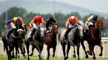 Talking Horses: ex-policeman and friends hoping for Sprint Cup glory