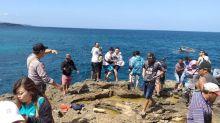 140 Ribu Turis Asing Kunjungi Indonesia di Juni 2021, Didominasi Timor Leste