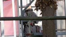 Salisbury spy attack: OPCW inspectors work alongside police