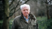 Sir David Attenborough makes stark warning about species extinction