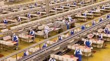中美貿易戰令美國豬肉地位不保