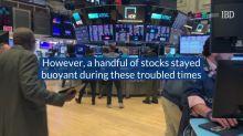 Stocks That Emerged From The Coronavirus Crash: Work-From-Home Stocks