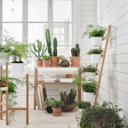 Plant Ladies, IKEA's New Summer Collection Was Made for You