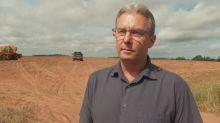 Farmers hoping for heavy rain as potato yields down