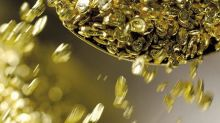 Who Are The Top Investors In Maya Gold and Silver Inc (CVE:MYA)?