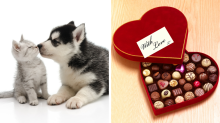 Valentine's Day gifts for people who still believe in love