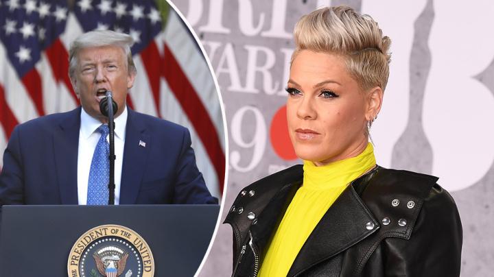'Coward': Pink lashes out at Donald Trump's protests response