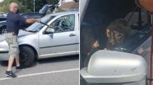 'Irresponsible': Man breaks into hot car with axe to save dog during heatwave
