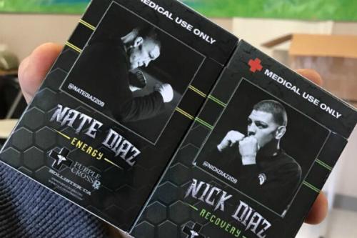 Nick e Nate Diaz são famosos por fazerem uso de maconha - Instagram