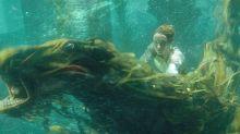 """""""Les Animaux fantastiques : les crimes de Grindelwald"""", le défi du renouveau"""