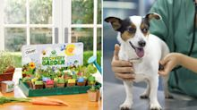Woolworths Discovery Garden could be harmful to pets