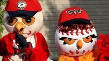 Baseball Team Cancels 'Caucasian Heritage' Night Following Backlash