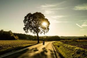 他山之石/新冠肺炎會導致交通事故的數量增加?