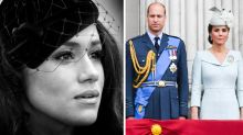 Royal family 'probably didn't know' about Meghan's miscarriage