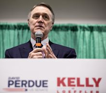 Republican Sen. David Perdue's stock portfolio shows he'd occasionally make at least 20 trades in one day, per a New York Times investigation