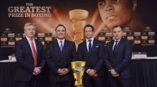 The lure of $50 million could attract elite talent to World Boxing Super Series