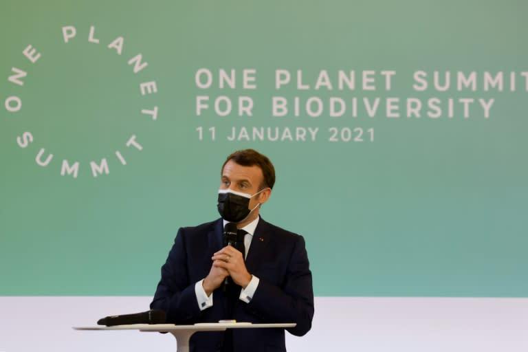 Se abre una cumbre en París para impulsar negociaciones frente a la pérdida  de biodiversidad