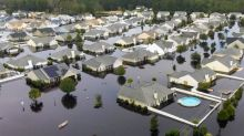 A busy hurricane season is on the horizon. Protect your home with tips from SC experts