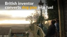 Dog poo-powered street lamp gets tails wagging