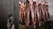 Rare air: U.S. meatpackers try air cleaning tech after COVID-19 outbreaks
