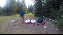 Hiker Records Dangerously Close Encounter With Grizzly Bear Family