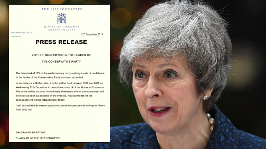 Theresa May wins no-confidence vote